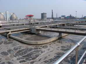 造纸废水处理常用的三种方法